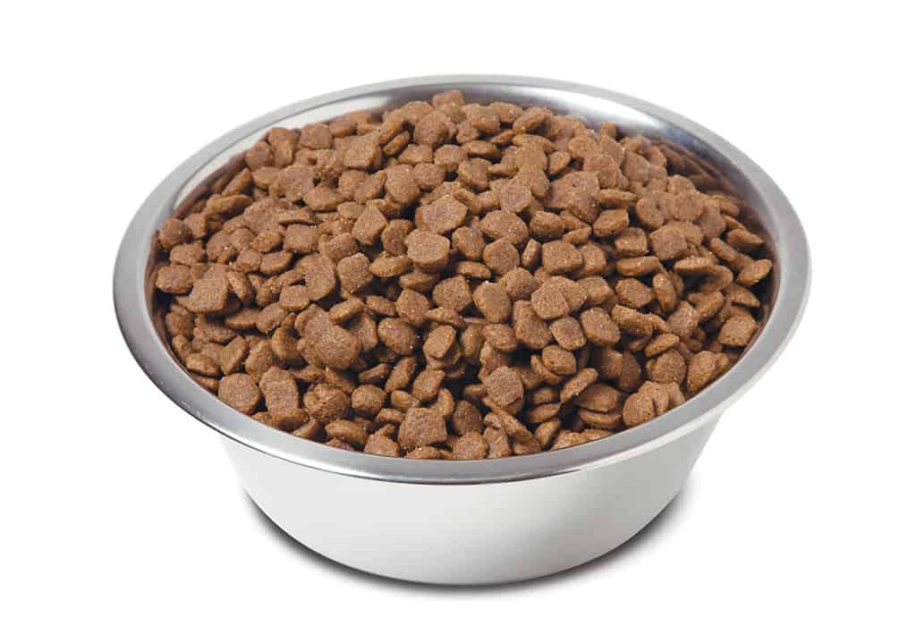 Wellness Complete Health Grain Free Large Breed