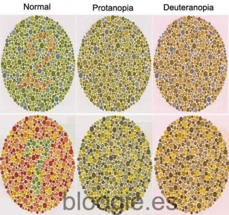 Cómo ven los daltónicos con protanopia y deuteranopia