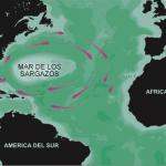 Localización del Mar de los Sargazos