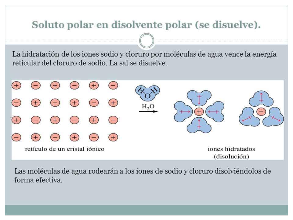 Soluto polar en disolvente polar