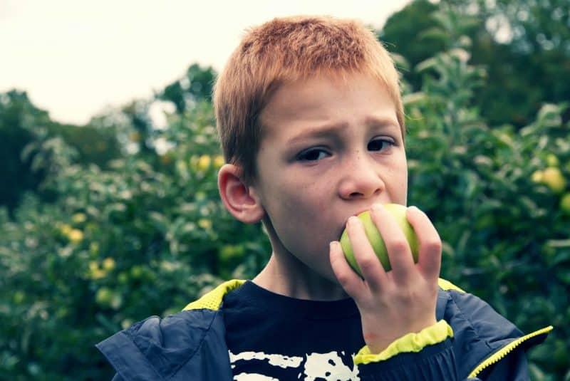 comiéndose una manzana mutsu