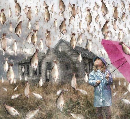 Lluvia de peces (ilustración)