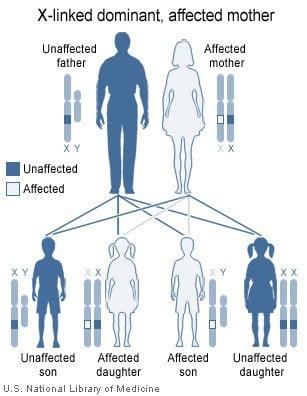 Herencia dominante ligada cromosoma X, madre afectada