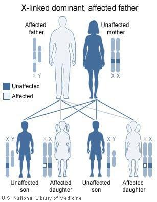 Herencia dominante ligada al cromosoma X, padre afectado