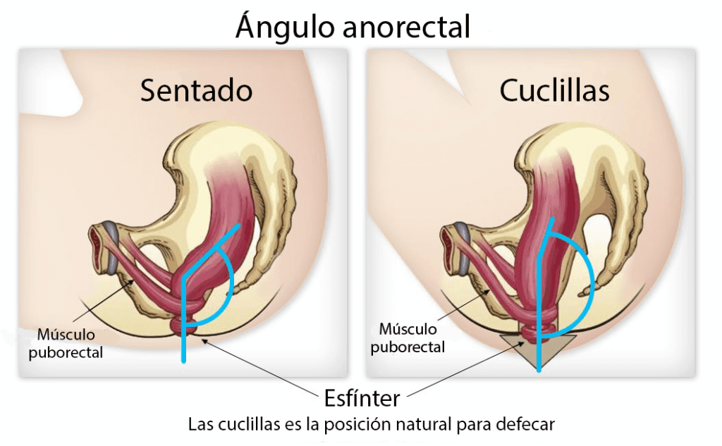Ángulo colorectal