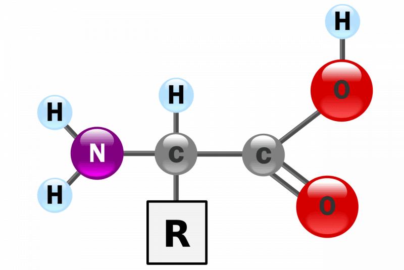 Estructura de un alfa-aminoácido