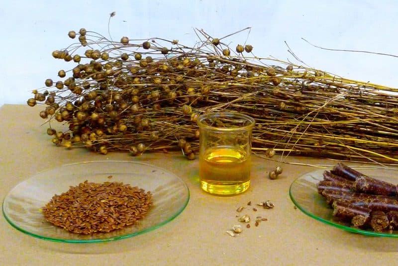 Lino y aceite de sus semillas