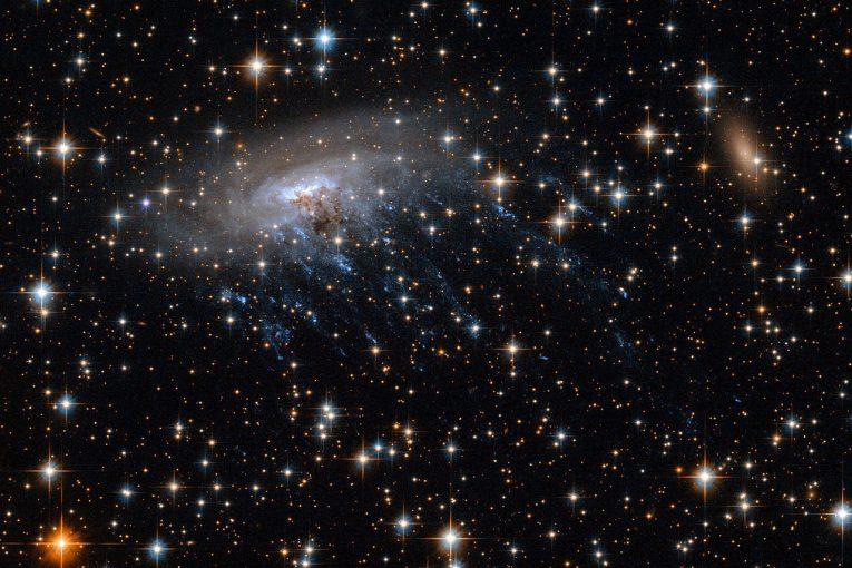 Fotografía de algunas estrellas