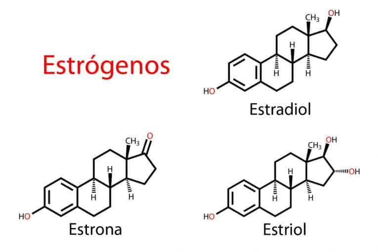 Estrógenos destacados