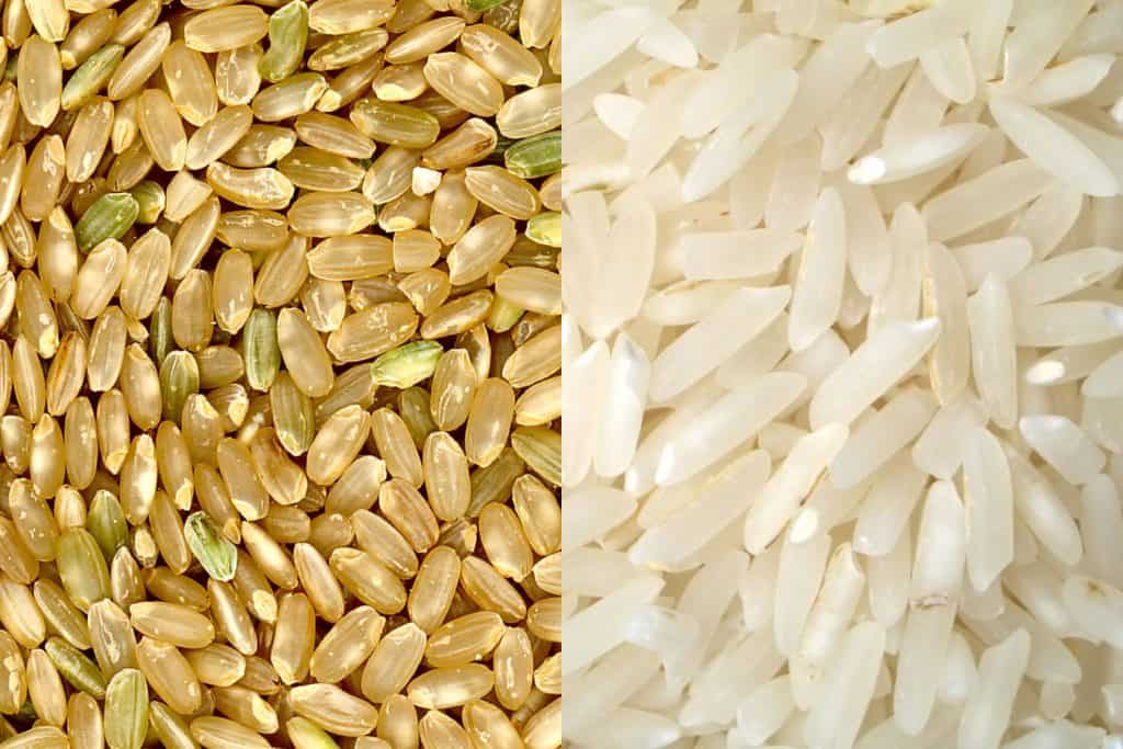 Arroz integral vs arroz refinado