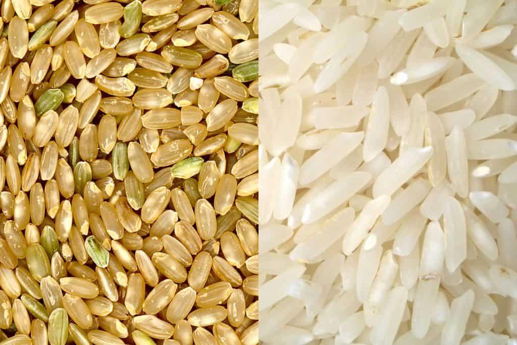 Arroz integral vs arroz refinado