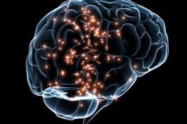 Actividad neuronal DARPA