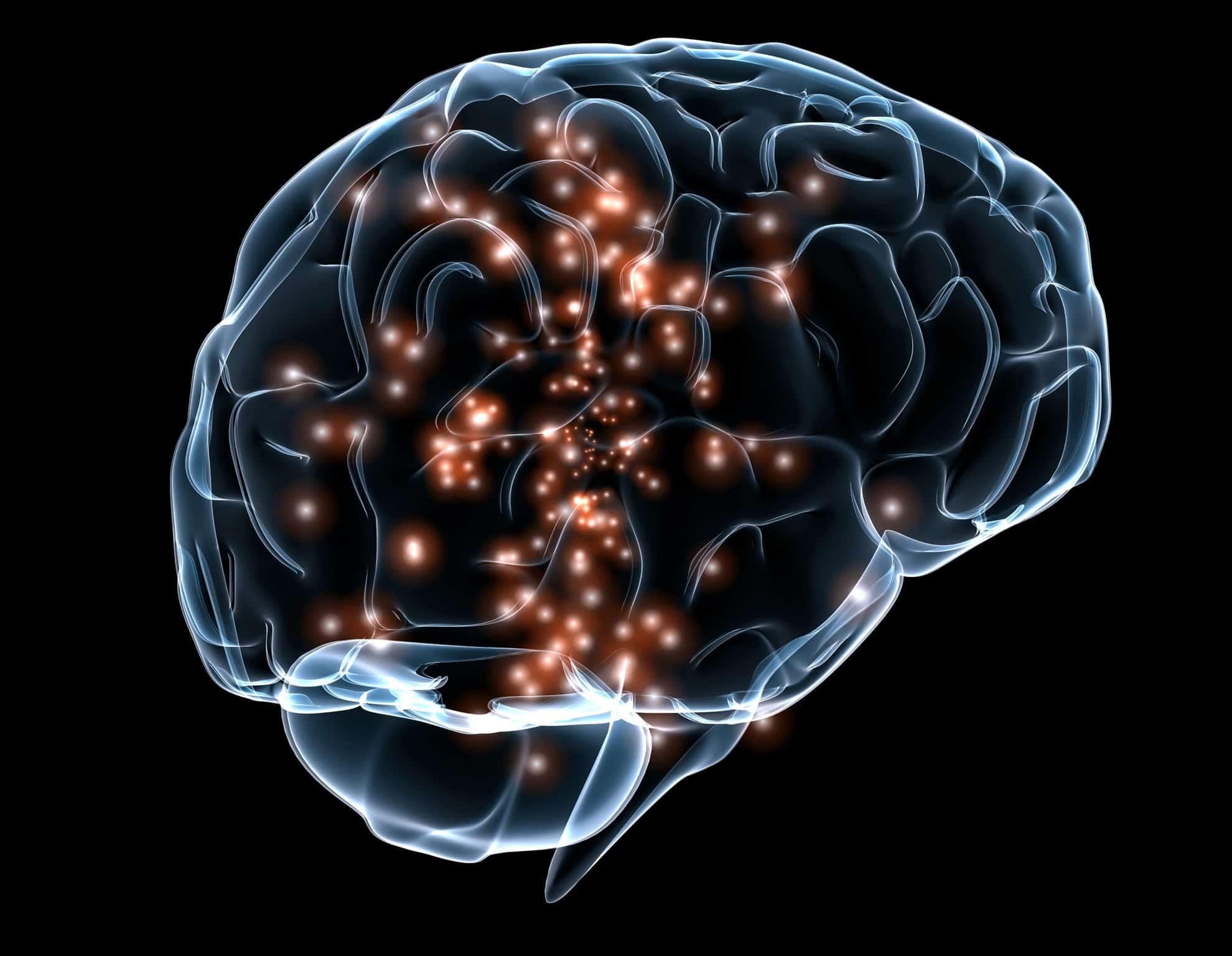 Qué diferencia el Sistema Nervioso Central y el Periférico ...