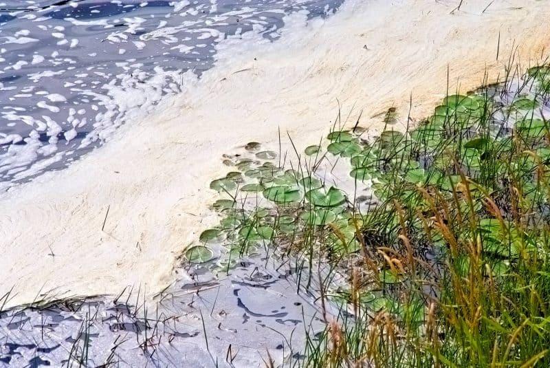 Río ¿agua contaminada?