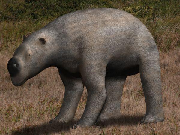Diprotodon (extinto)