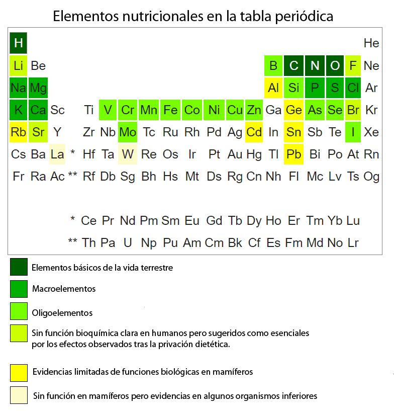 Elementos nutricionales en la tabla periódica