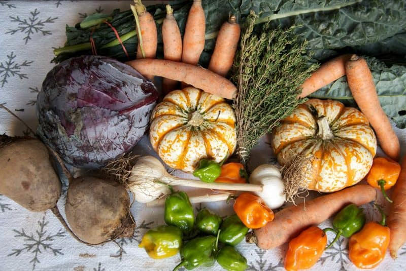 Calabaza, zanahorias y otras verduras