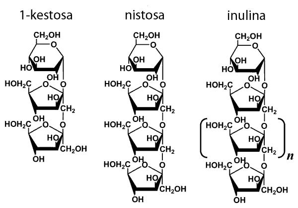 Inulina y fructooligosacaridos