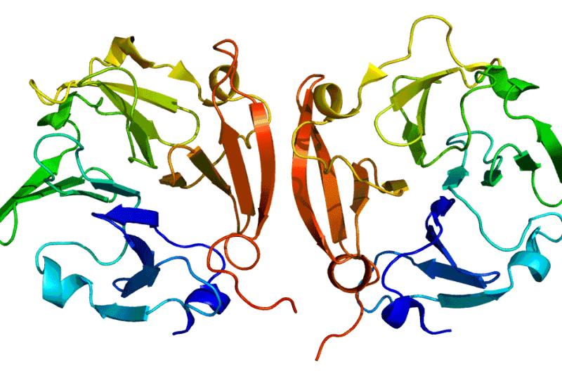 Metaloproteinasa MMP9