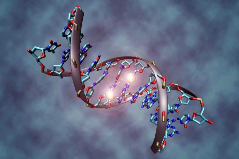 Metilación del ADN