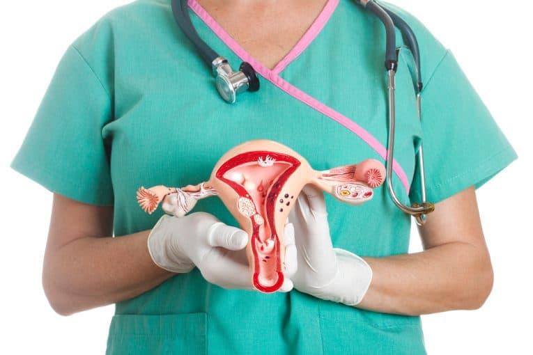 Ginecóloga con modelo de útero