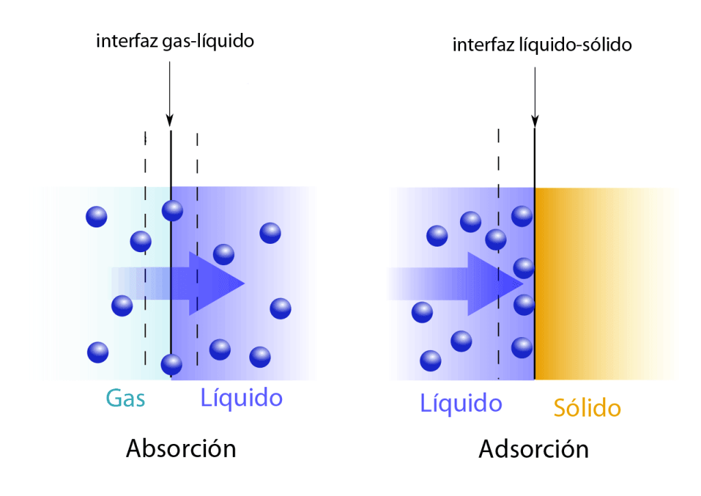 Absorción vs adsorción