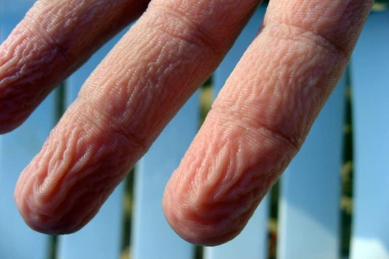 dedos arrugados por agua