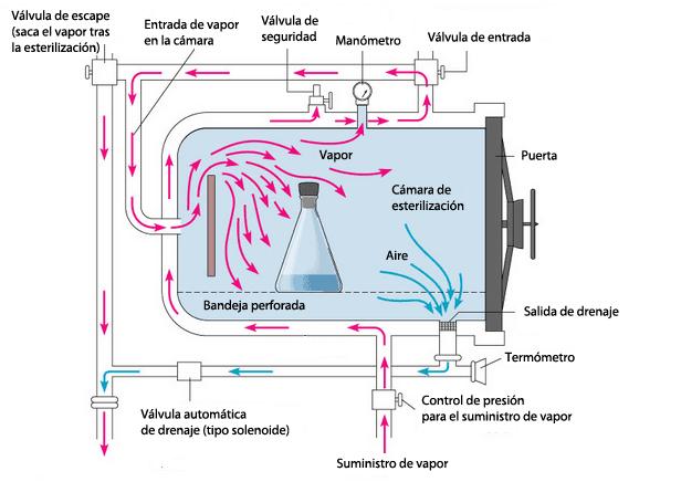 proceso de esterilización en autoclave