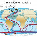 Circulación termohalina