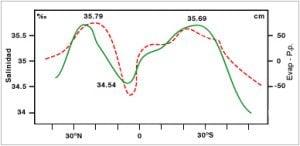 Salinidad superficial y evaporación - Latitud