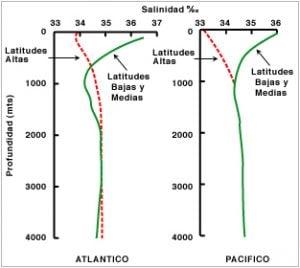Salinidad superficial y evaporación - Profundidad