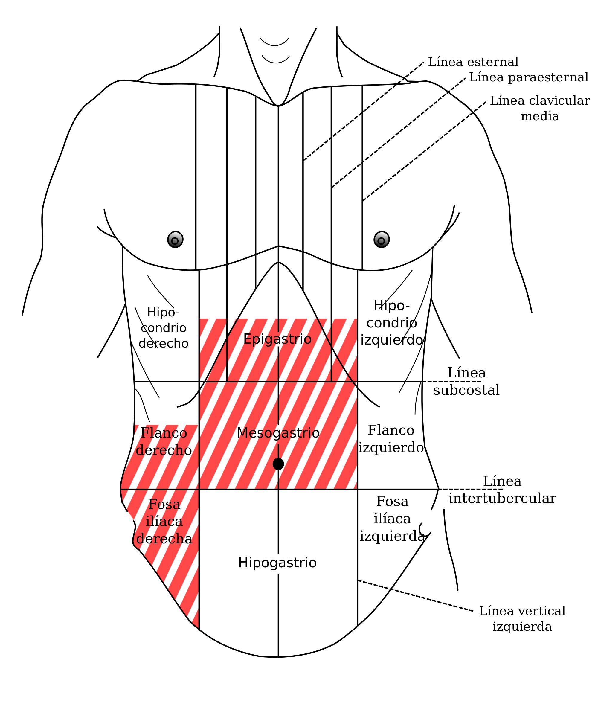 Apendice lado derecho izquierdo