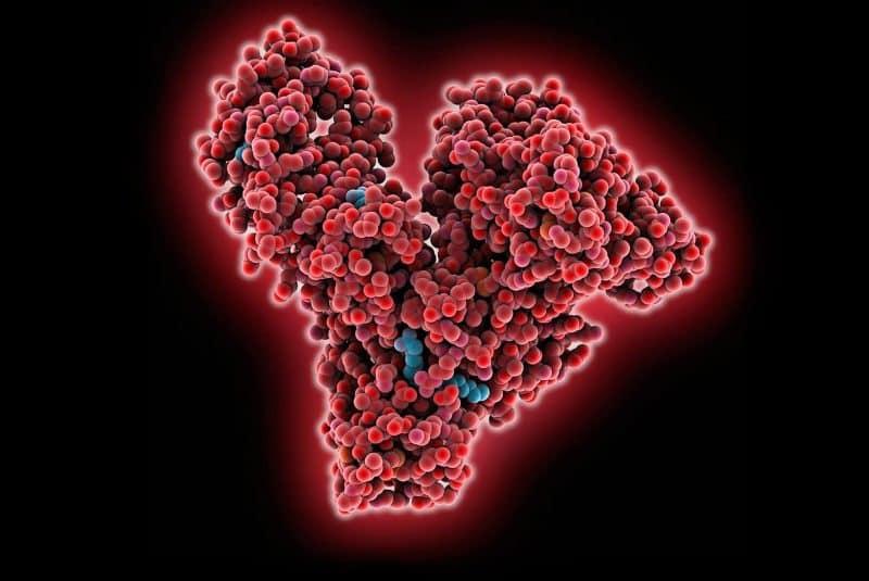 Molécula de albúmina 3D