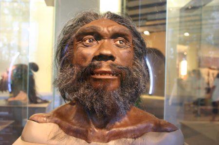 Reconstrucción de la cara de un neandertal