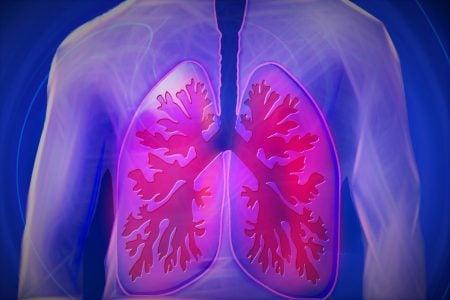 Los pulmones