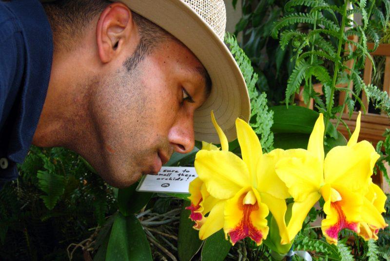 Un hombre oliendo flores