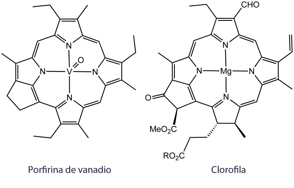 Porfirina y clorofila