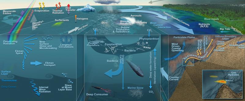 Ecología de los bentos marinos