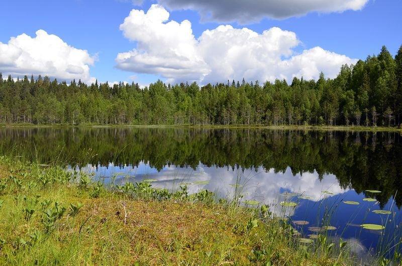 Reflexión especular sobre un lago
