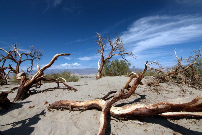 Biomas desérticos: el Valle de la Muerte